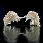 Anne Notebaert (B) Mysterieus Glas
